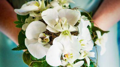 amale - Sundaram Wedding 002